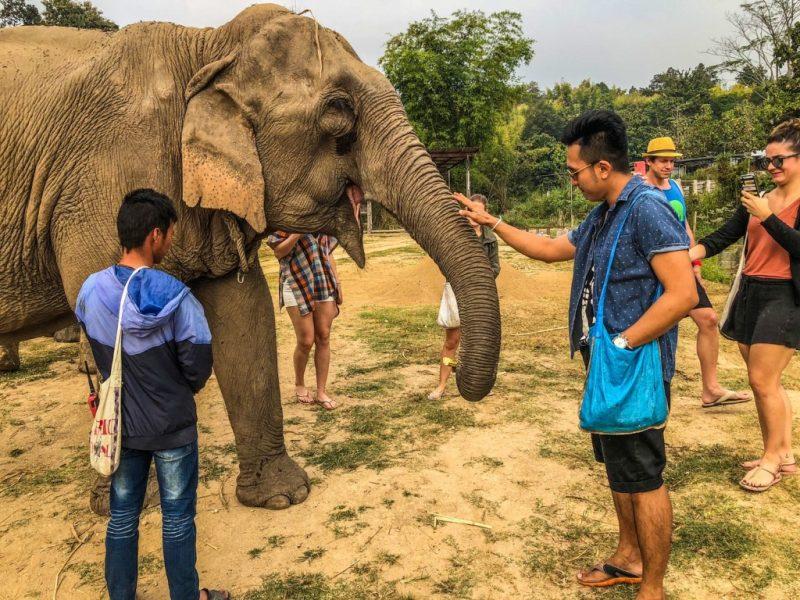 เลี้ยงช้างไทยที่แม่แตง_๒๐๐๖๑๐_0023